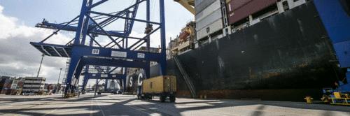 Paraná acumula crescimento de 16% nas exportações em 2021