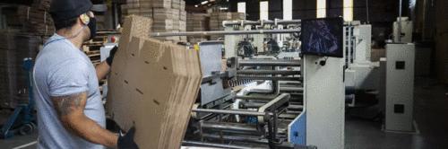 Negócios regenerativos preparam a indústria para a economia do futuro